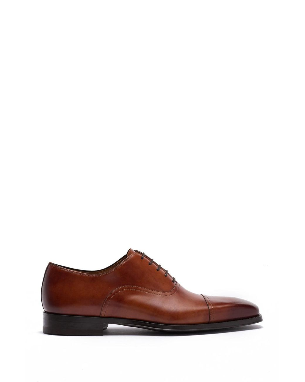 Magnanni Lucas Leather Oxford in Cognac