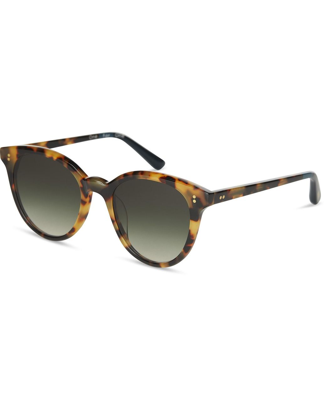 TONS Sunglasses Autry Autry Matte Havana Tortoise Olive Graient 10009600