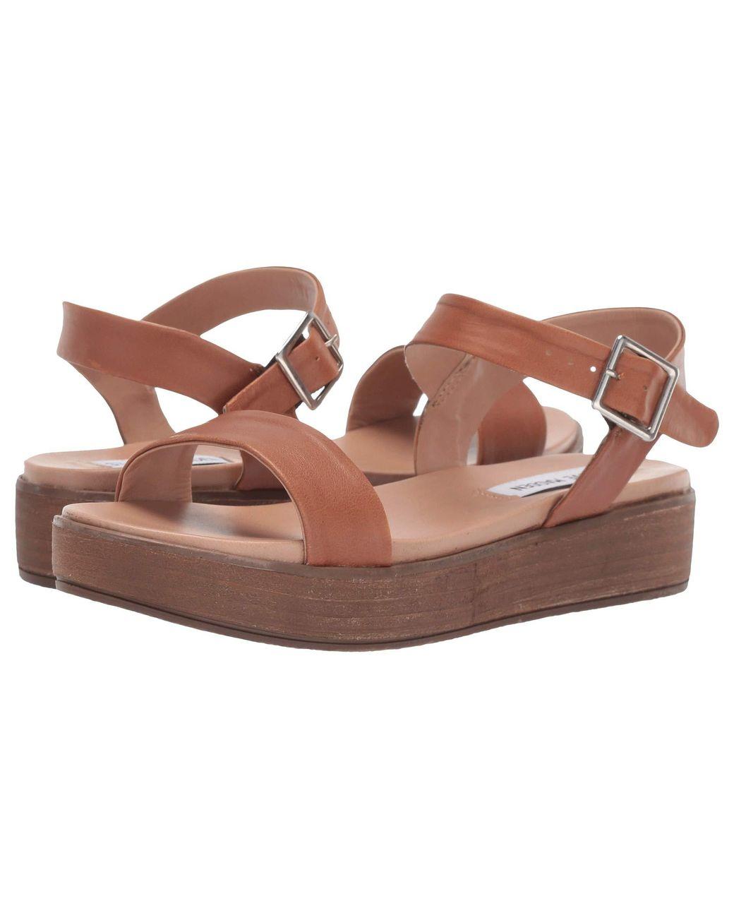 8fd1fdcacc22 Lyst - Steve Madden Aida-1 Platform Sandal (black Leather) Women s ...