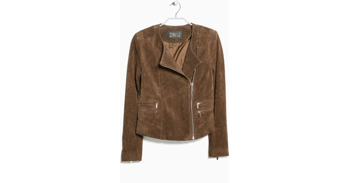Mango Peccary Leather Jacket In Cognac Brown Lyst