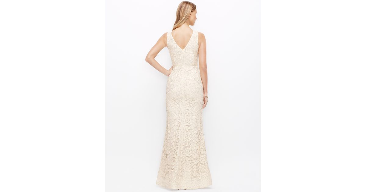Lyst Ann Taylor Petite Lace V Neck Wedding Dress In Natural