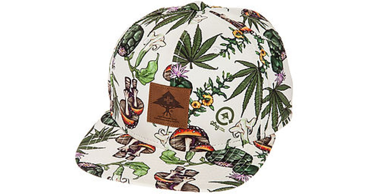 bf0405242bc Lyst - LRG The Roots Foundation Plant Life Hat in White for Men
