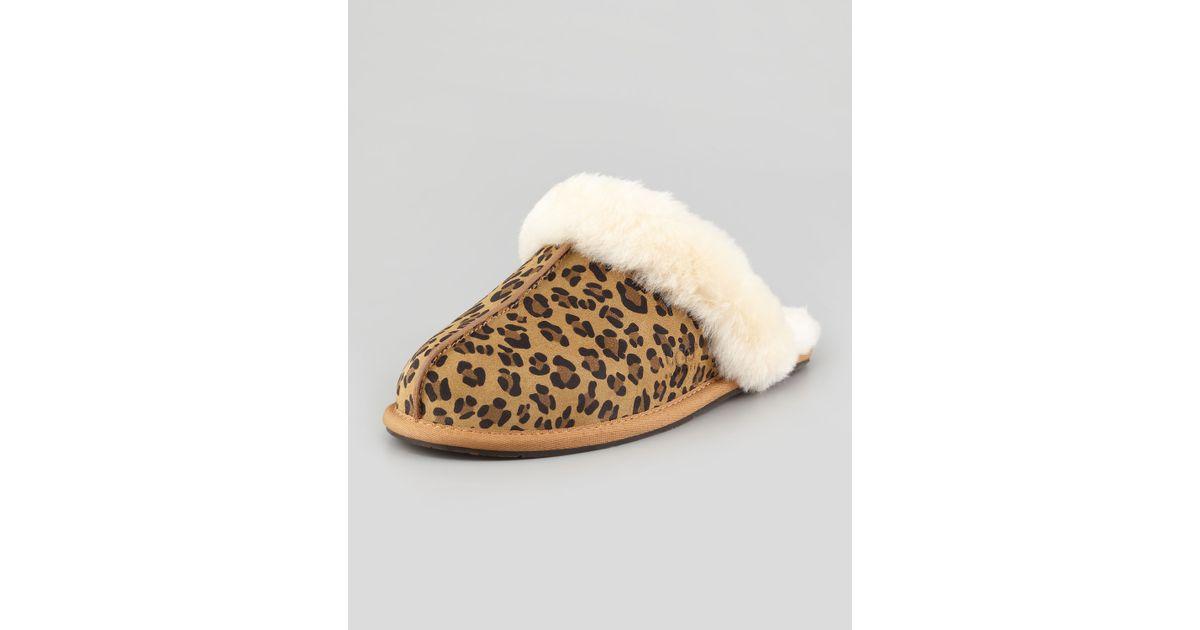 02d5a83a07b UGG Multicolor Scuffette Ii Leopard-Print Mule Shearling Slipper