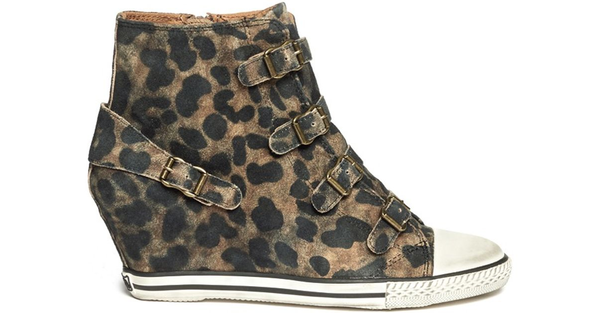 25d48ab4fd11 Ash Eagle Leopard Suede Wedge Sneakers - Lyst