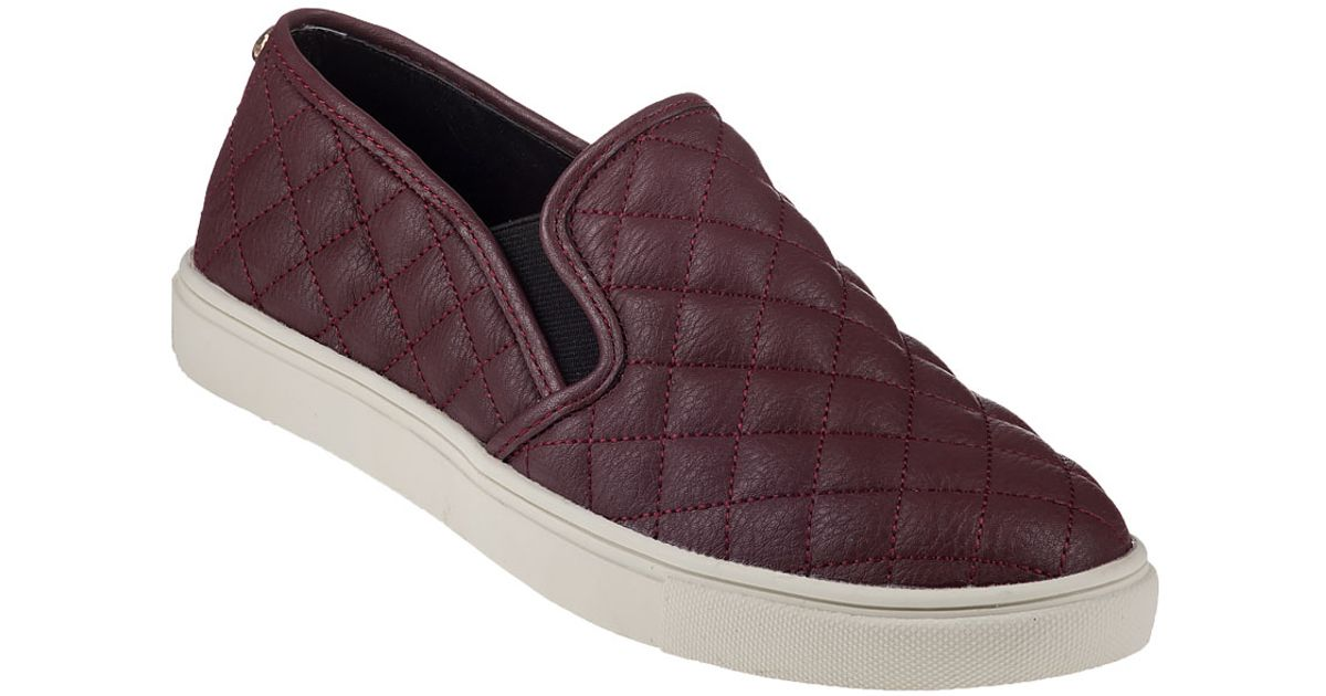 7800f5b6b066 Lyst - Steve Madden Ecentrcq Slip-on Sneaker Wine in Purple