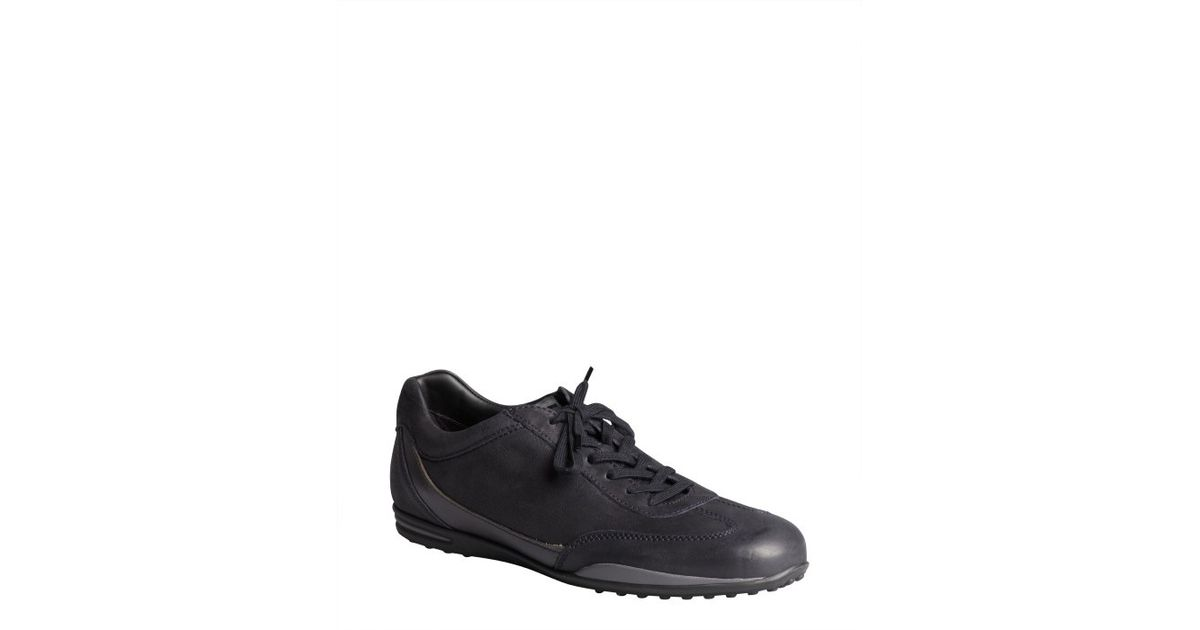 branded side lace-up sneakers - Black Tod's g6S7AUyEnQ