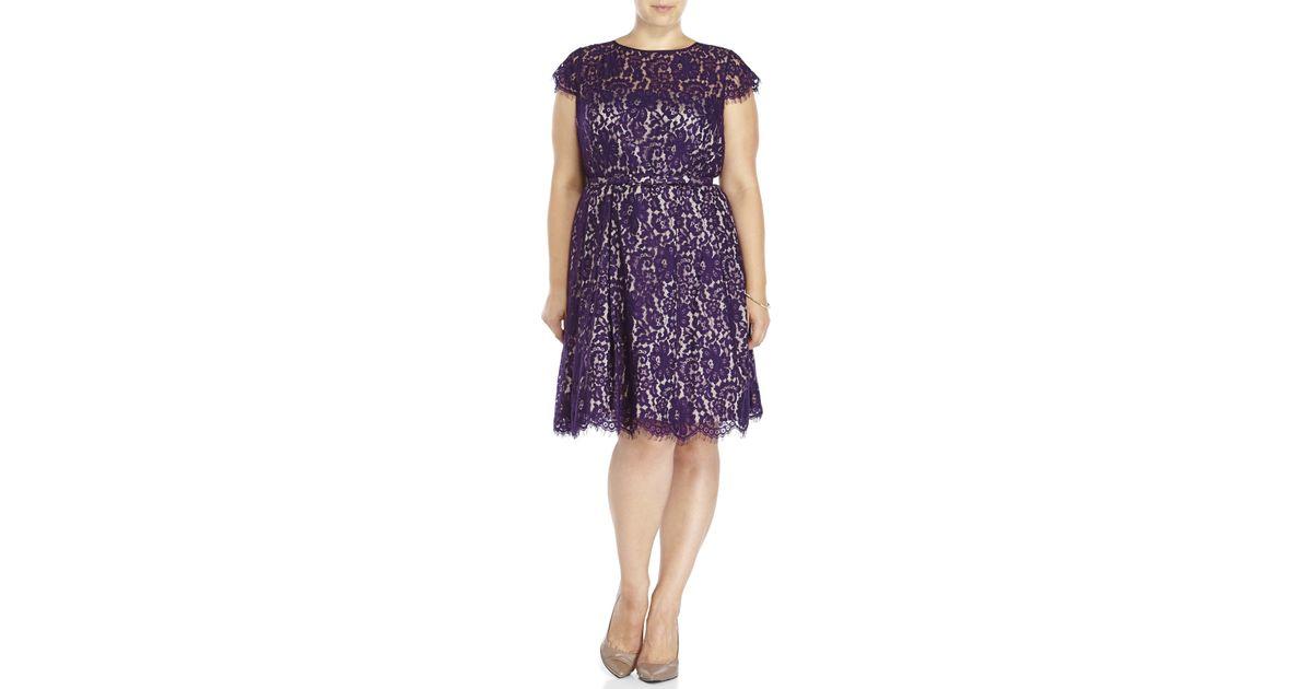 Eliza J Plus Size Purple Lace Fit & Flare Dress in Purple - Lyst