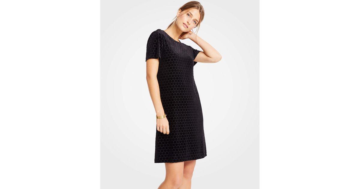 ffaa5f80598b Lyst - Ann Taylor Petite Velvet Dot T-shirt Shift Dress in Black