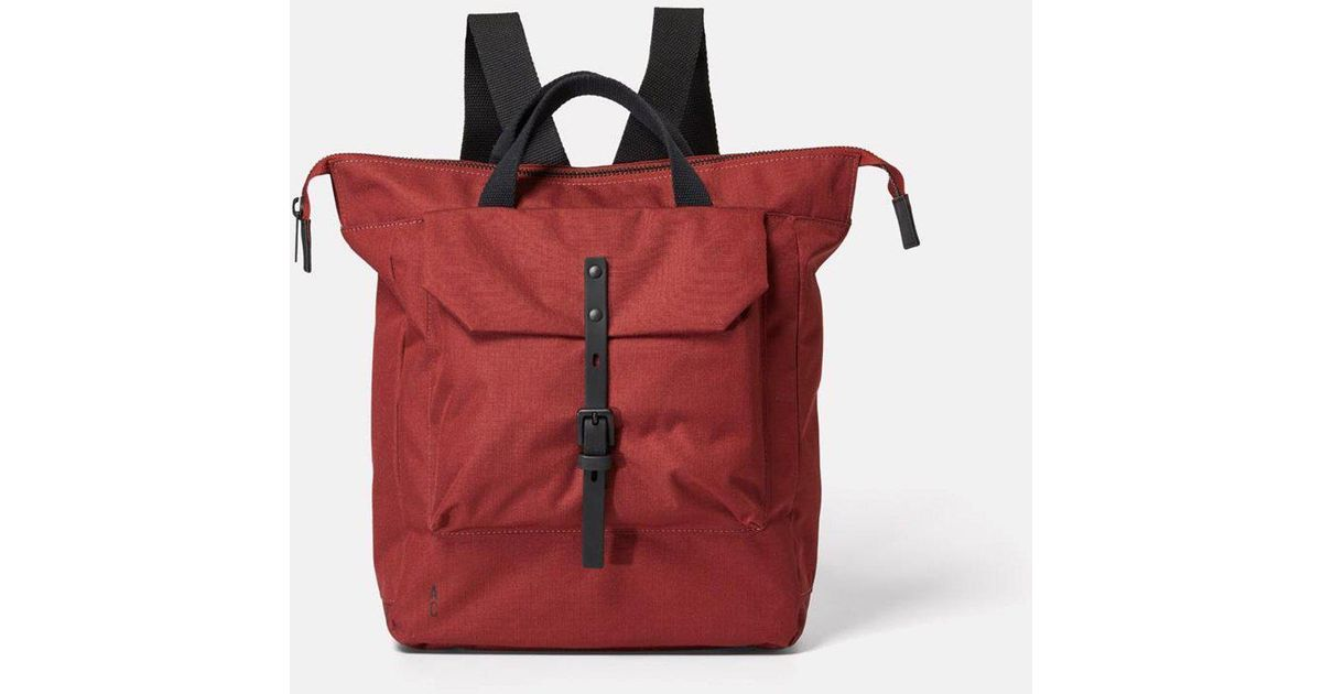 a570bda4fd Lyst - Ally Capellino Frances Ripstop Backpack in Red