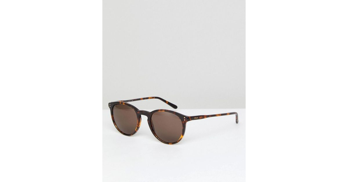 a6f3eb64fe84 Polo Ralph Lauren Round Sunglasses In Tort in Brown for Men - Lyst