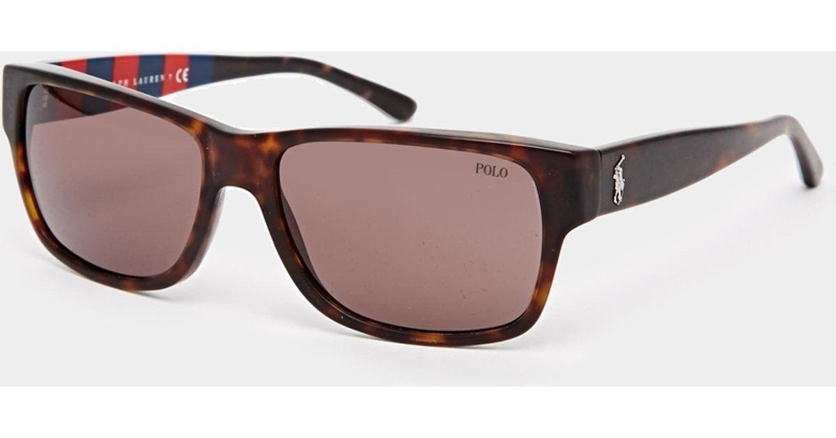 Lyst - Polo Ralph Lauren Wayfarer Sunglasses in Brown for Men