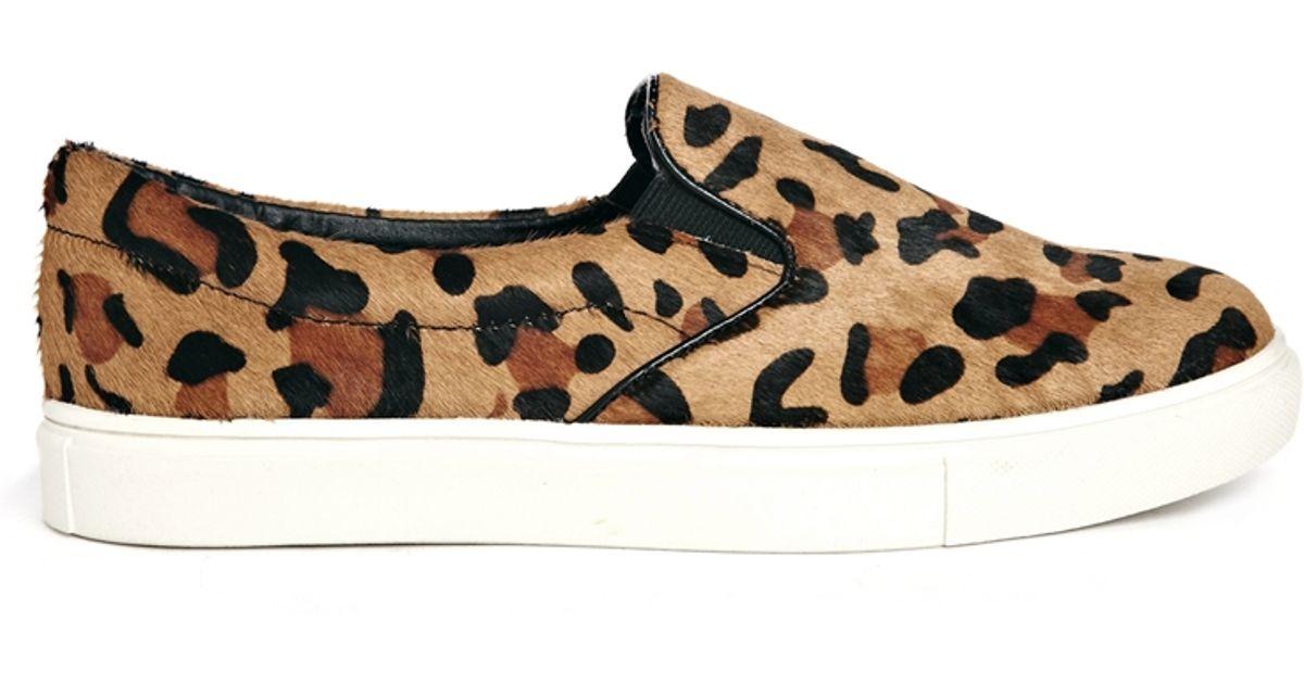 Steve Lyst Ecentric Leopard Slip On Sneakers Madden rrqdAf