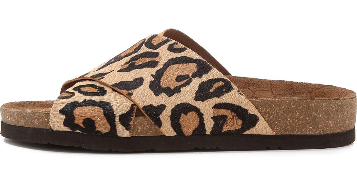 9660fc68b251 Lyst - Sam Edelman Flat Sandals Adora Leopard Print