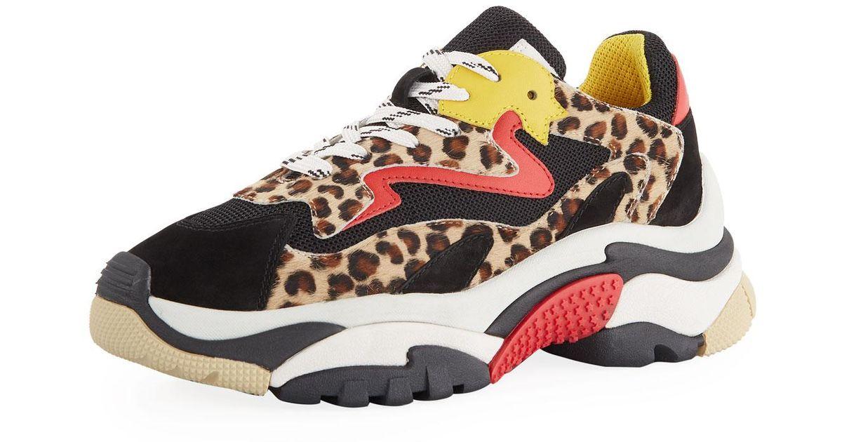 Ash Suede Addict Mixed Leopard