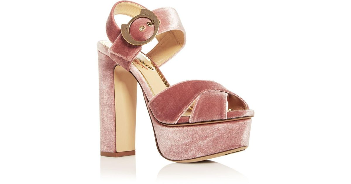 9d8c5399ab4 Charlotte Olympia Pink Women's Catbuck Velvet High - Heel Platform Sandals