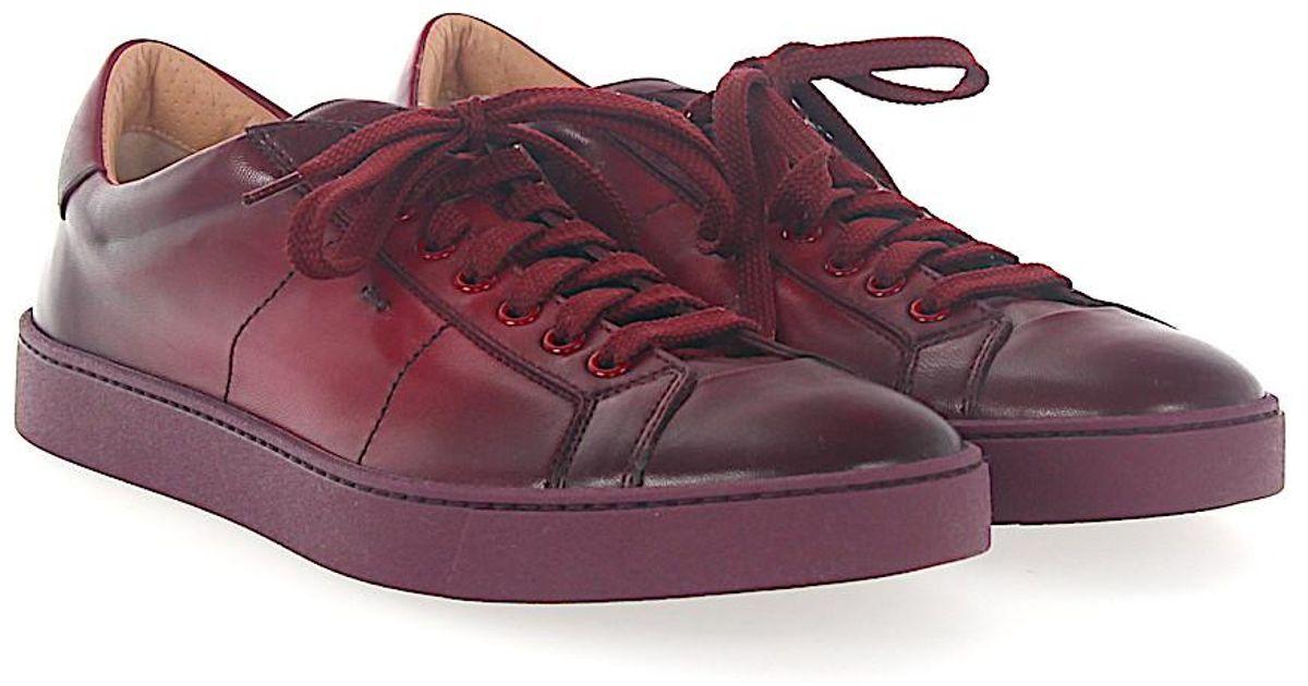 santoniSneaker 20374 smooth leather Finished bordeaux IPka2SVP