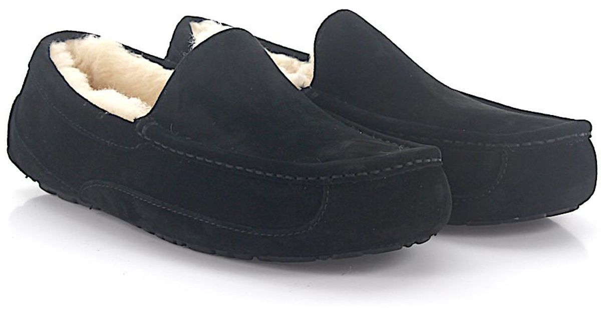 UGG House Moccasins ASCOT suede lamb fur