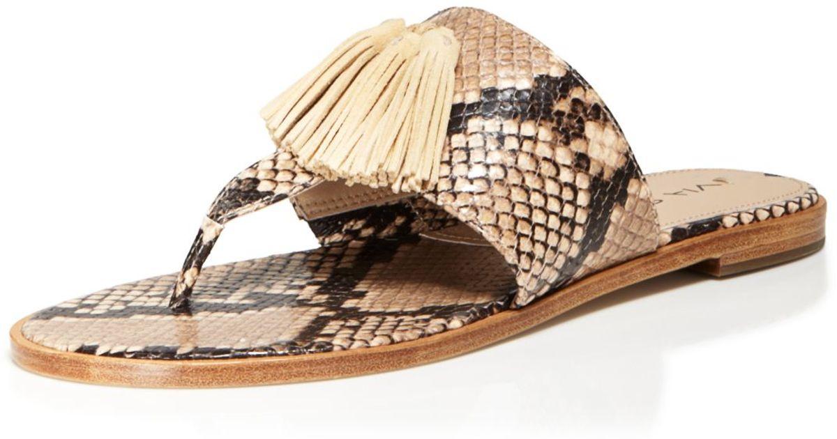 6c9a084f3dcd8a Lyst - Via Spiga Flat Thong Sandals - Terrin Tassel in Natural