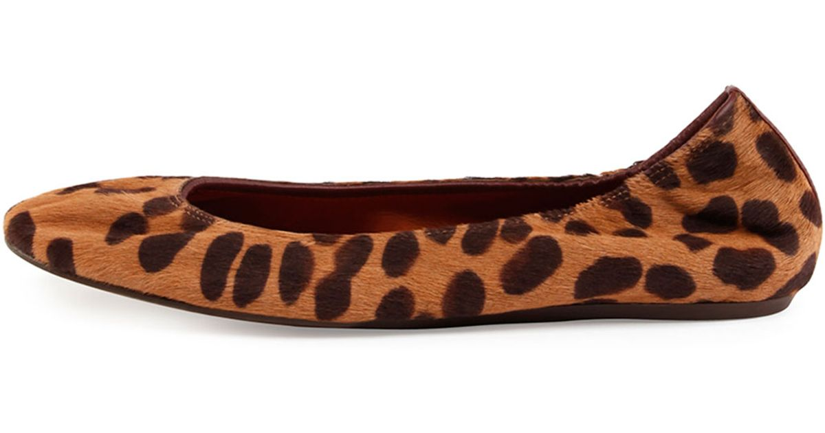 351be77237ec Lyst - Lanvin Leopard-Print Calf-Hair Ballet Flats