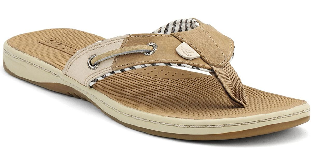 33d868570ebe Lyst - Sperry Top-Sider Sperry Women S Seafish Thong Sandals in Natural
