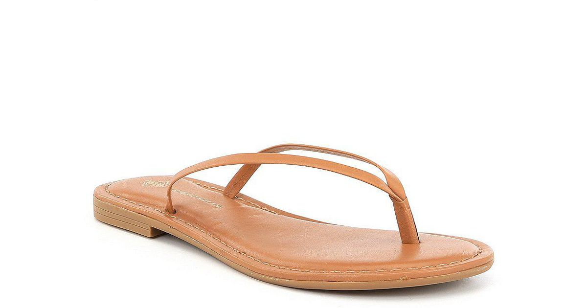 10069a9f784 Antonio Melani Brown Lagoona Nappa Leather Thong Sandals