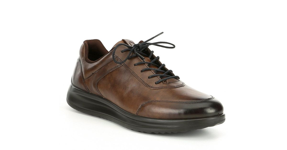 Aquet Sneakers in Cocoa Brown
