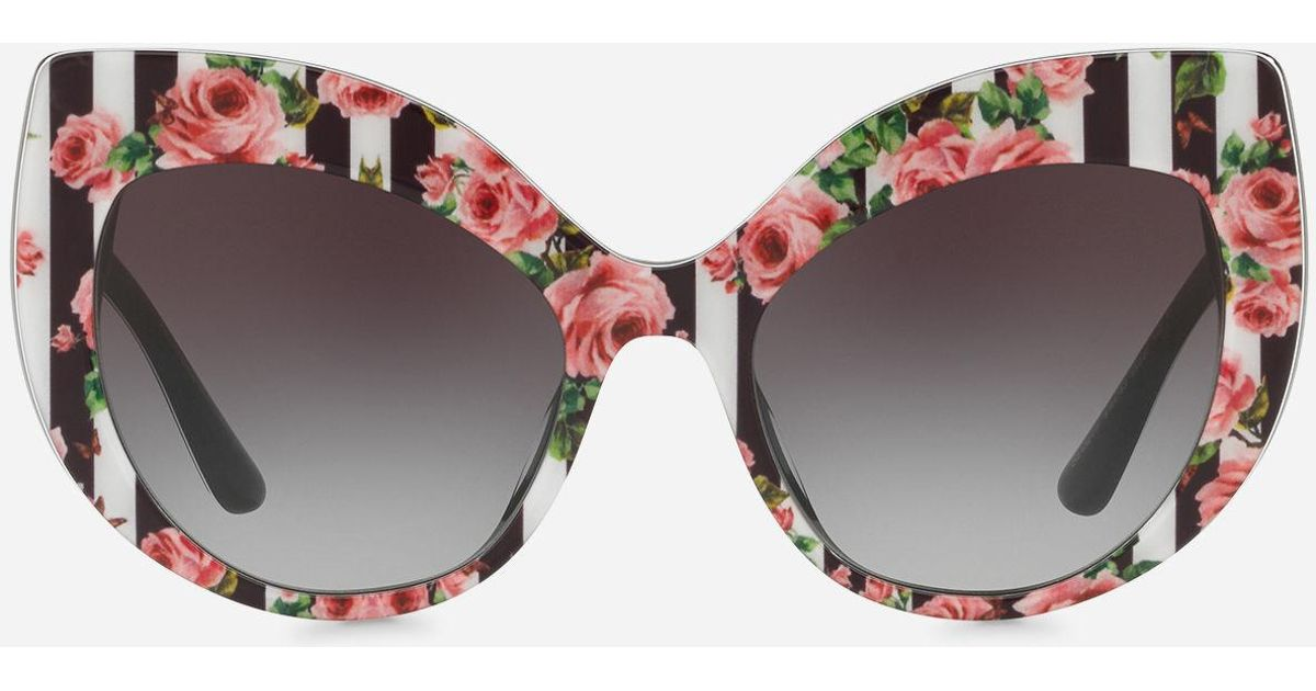 e585628f5 Dolce & Gabbana Cat-eye Sunglasses With Stripe And Rose Print in Black -  Lyst