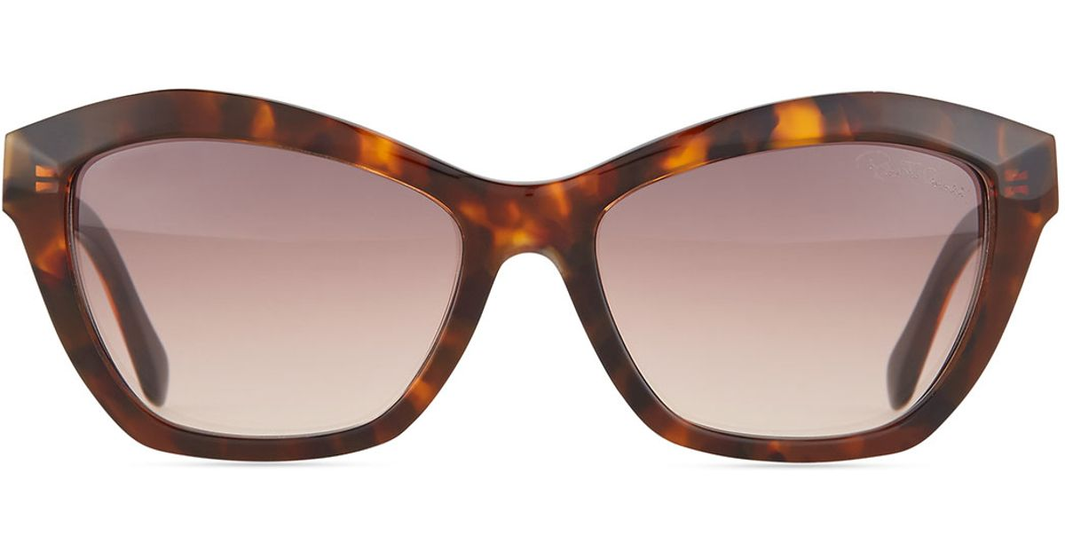 roberto cavalli square tortoise sunglasses in brown lyst