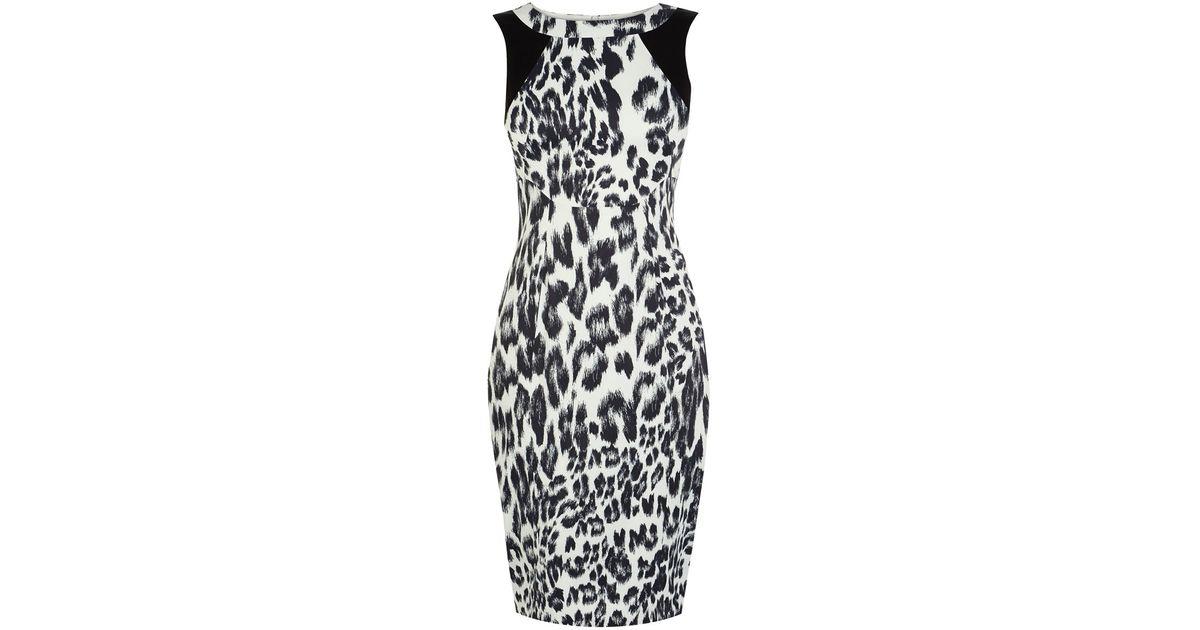 3888d731ad59 Karen Millen Leopard Print Dress - Lyst