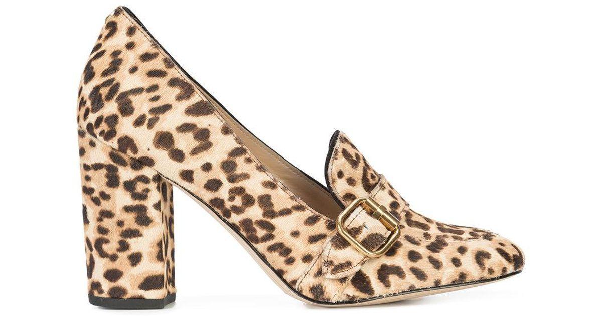 280e4f9b5b05 Lyst - Sam Edelman Leopard-print Heeled Loafers
