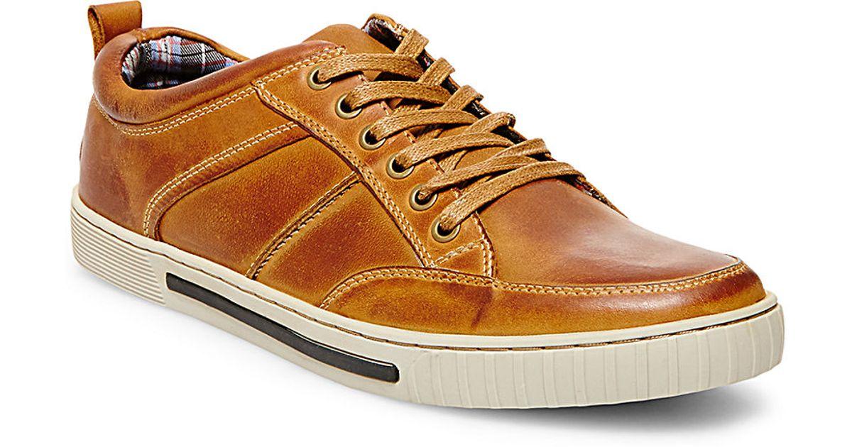 Steve Madden Leather Sneakers 28 Images Steve Madden