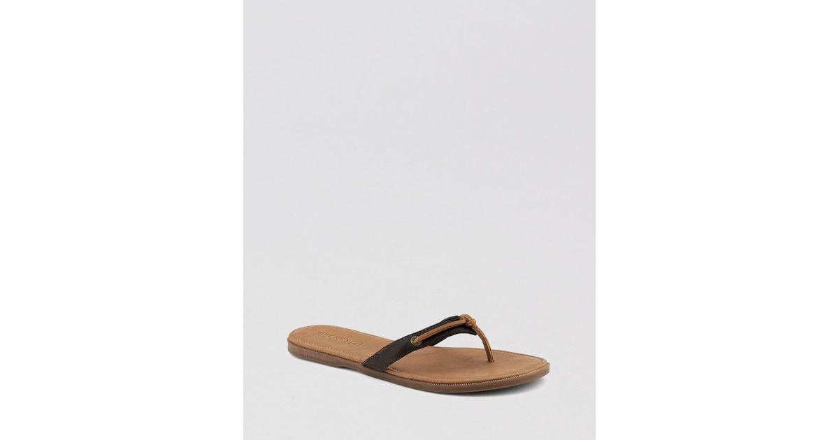 3217e99da99f Lyst - Sperry Top-Sider Flat Thong Sandals Calla in Brown
