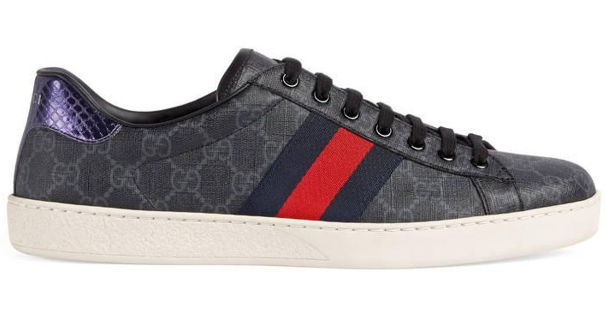 united states later the best attitude Gucci Blue Ace GG Supreme Sneaker for men