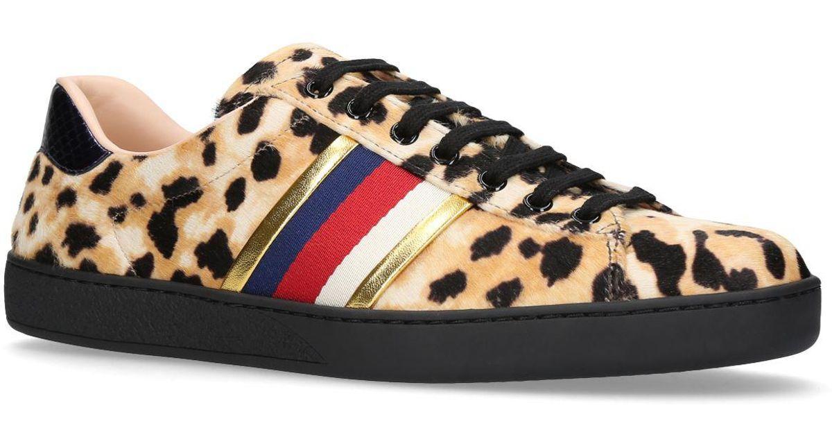 Ace Leopard Print Sneakers for Men - Lyst