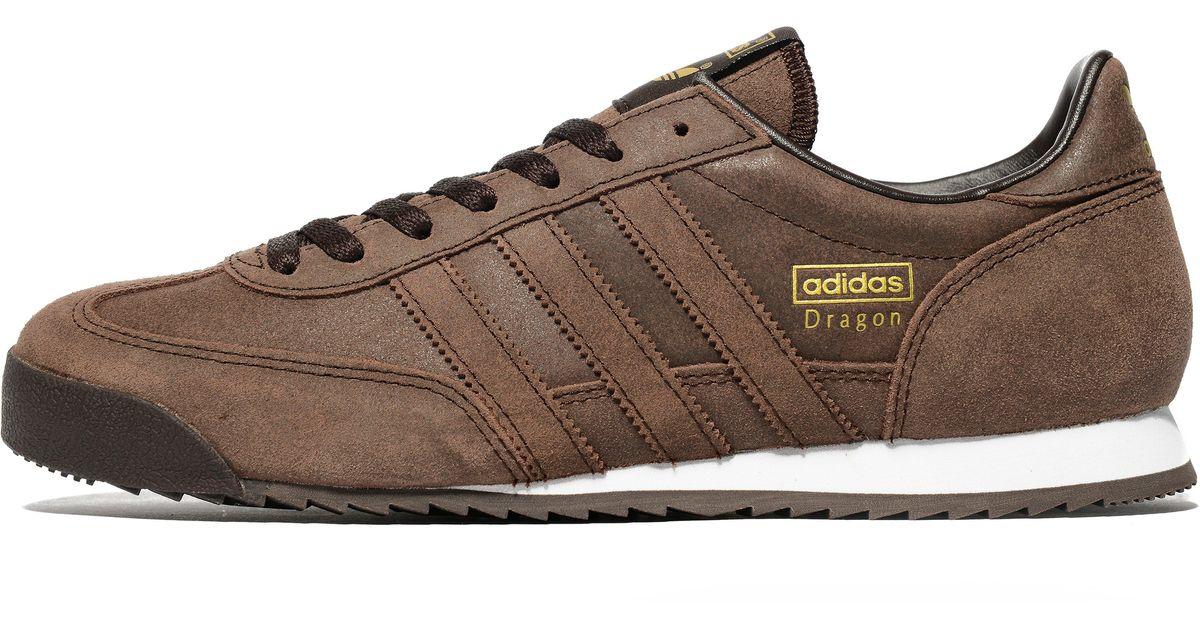 Adidas Originals Brown Dragon for men