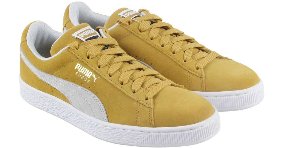 Lyst - PUMA Classic Honey Mustard White Lace Up Sneakers in Yellow for Men 265432234a0c