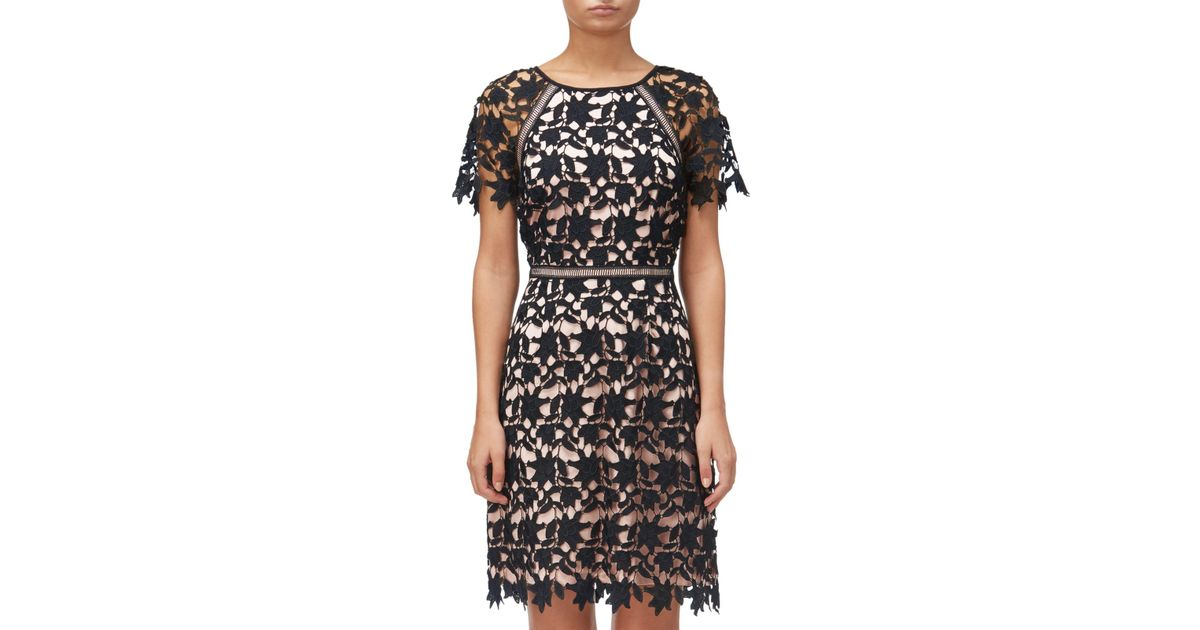 Adrianna Papell Black Ava Lace Trimmed A Line Dress