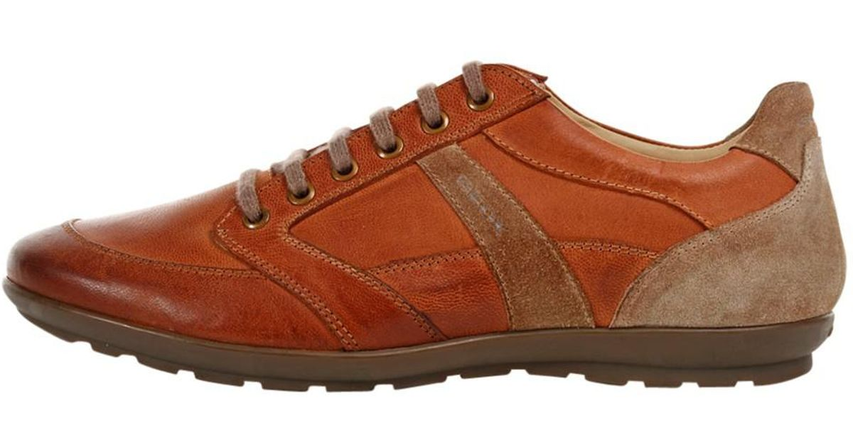 Geox Brown Symbol Leather Trainers for Men Lyst
