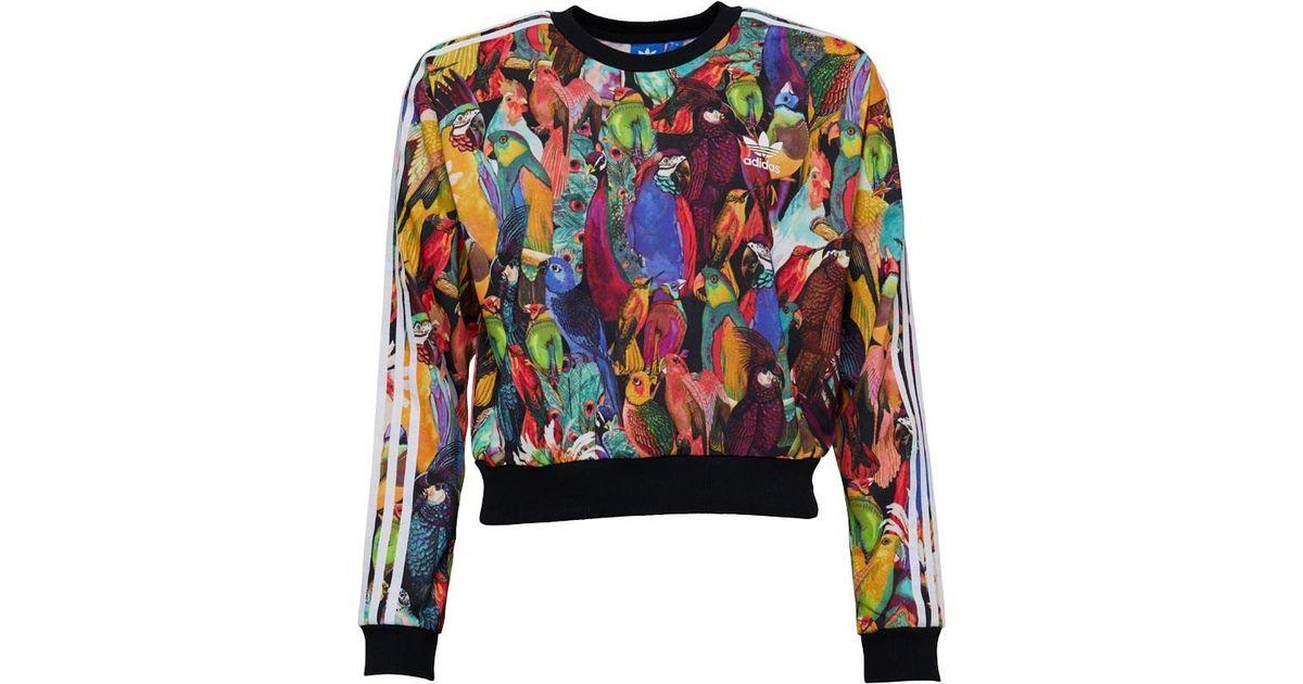 Adidas Originals Multicolor X The Farm Company Passaredo Sweatshirt Multicolour