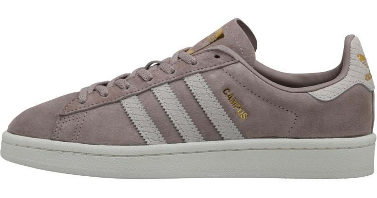 online store 48b2b 21653 adidas Originals Campus Trainers Vapour Greenpearl Greywhite in Gray -  Lyst