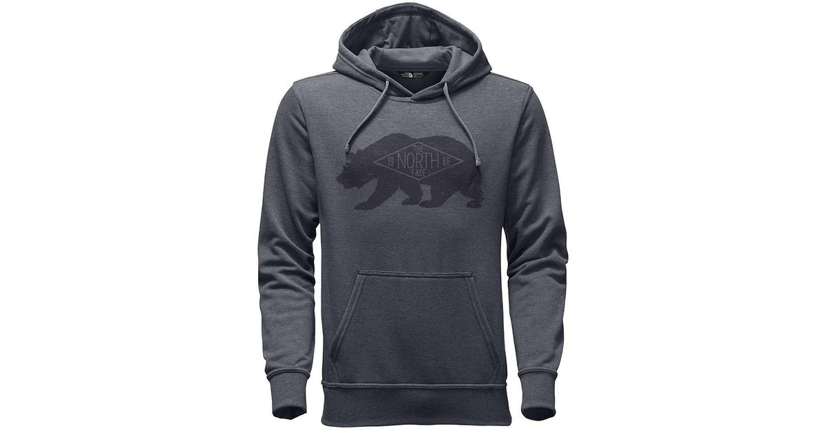 9797202d2 The North Face Gray Bearitage Hoodie for men