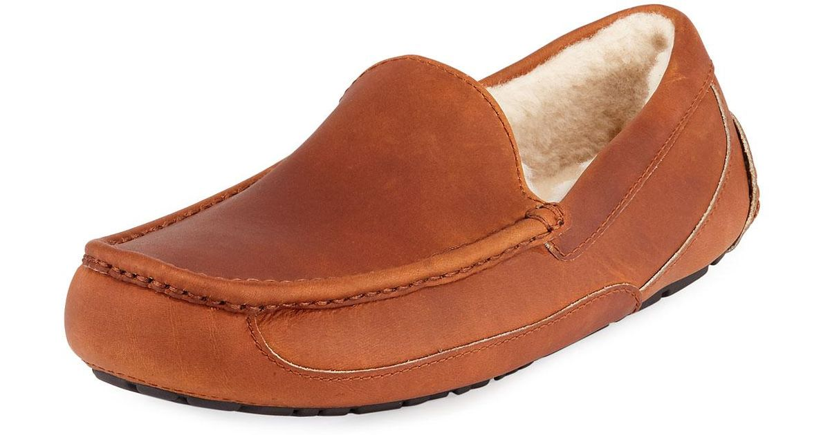 5bd5447e5bf Ugg Brown Men's Ascot Pinnacle Horween Leather Slippers for men