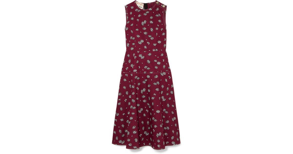 Floral-print Cotton-poplin Midi Dress - Burgundy Marni Clearance Cheap Price DRTNU4jPG
