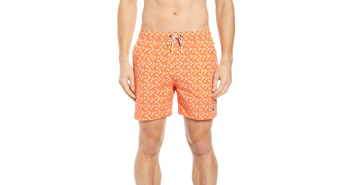 Flamingos Intersperse Mens Beach Pants Summer Casual Swim Shorts with Pockets