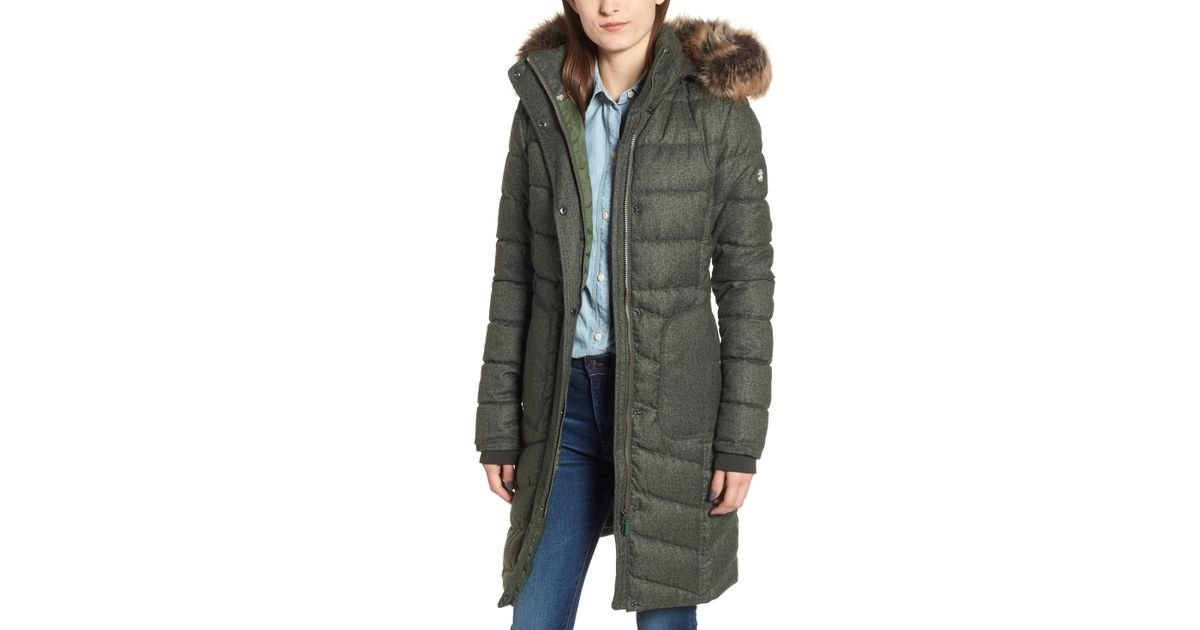 barbour foreland