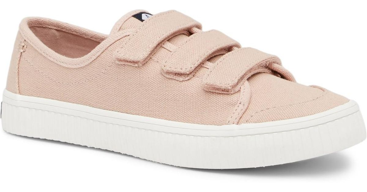 Sperry Crest Hook-and-Loop Sneaker rVWdQ