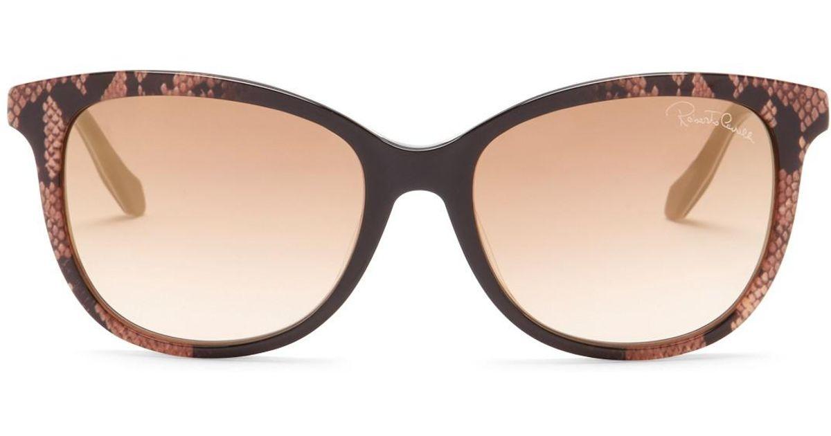 Lyst - Roberto Cavalli Women\'s Merak Cat Eye Plastic Frame ...