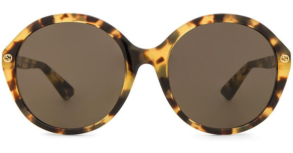e83227be120 Lyst - Gucci Oversize Round Acetate. in Brown