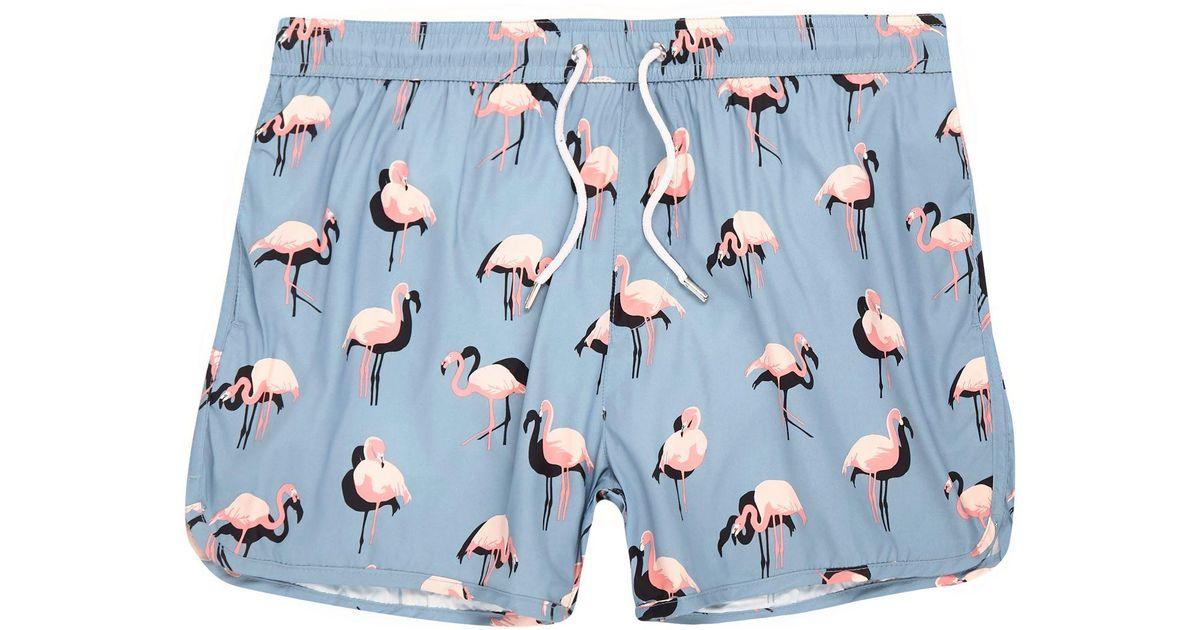 0f942878b6 River Island Blue Flamingo Print Runner Swim Shorts in Blue for Men - Lyst