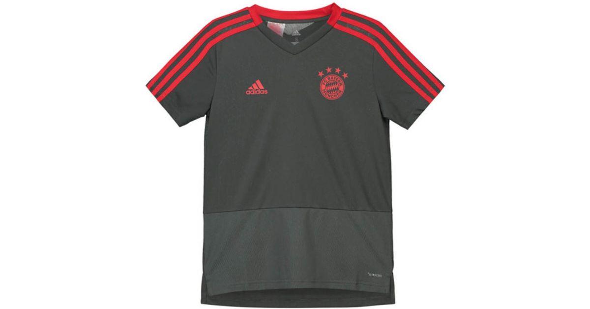 31bbdcf02d9 adidas 2018-2019 Bayern Munich Training Shirt (utility Ivy) - Kids Men's T  Shirt In Grey in Gray for Men - Lyst